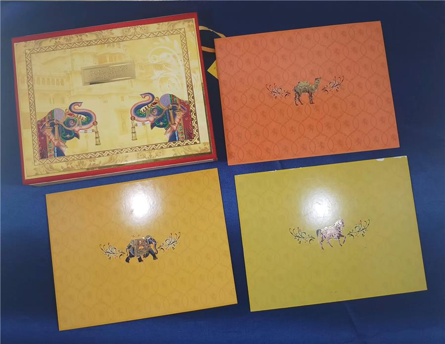 Elephant Theme Box with inserts back side