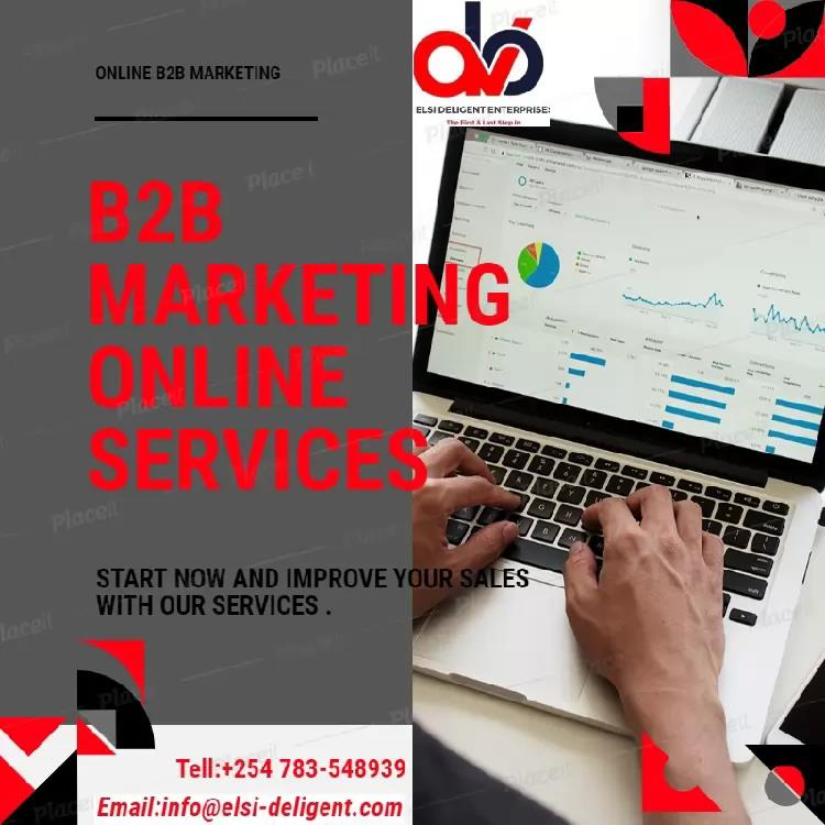 B2B Digital Marketing Services